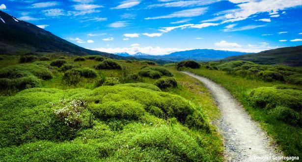 Trekking Torres del Paine